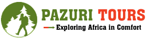Pazuri Tours and Travel Ltd
